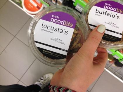 Insecten Food van de toekomst